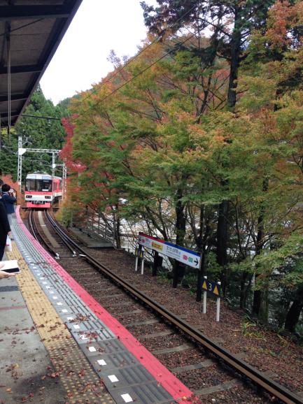 京都の紅2015_a0188798_23172636.jpg