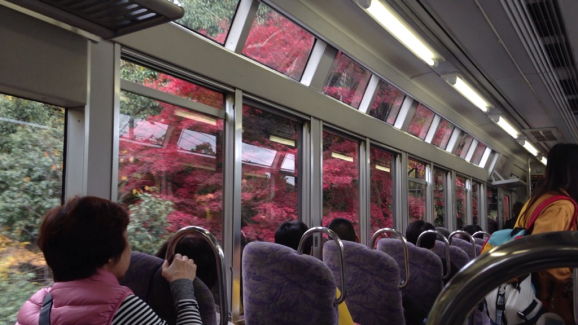 京都の紅2015_a0188798_23172651.jpg