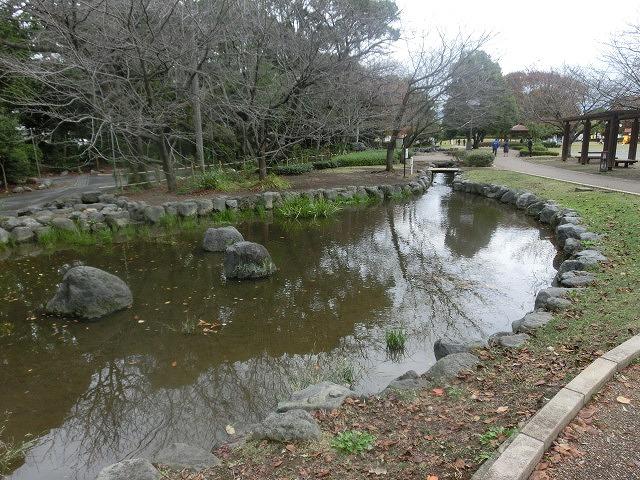 米の宮公園で被爆二世「アオギリ」の苗木の記念植樹_f0141310_7214156.jpg