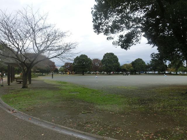 米の宮公園で被爆二世「アオギリ」の苗木の記念植樹_f0141310_722491.jpg