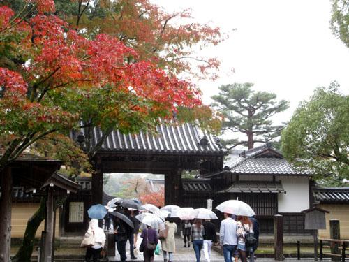 紅葉だより29 雨の金閣寺_e0048413_16314725.jpg