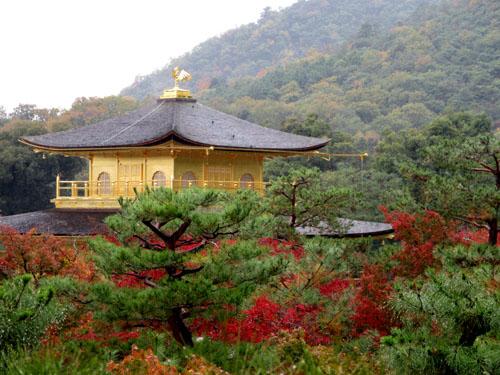 紅葉だより29 雨の金閣寺_e0048413_16325320.jpg