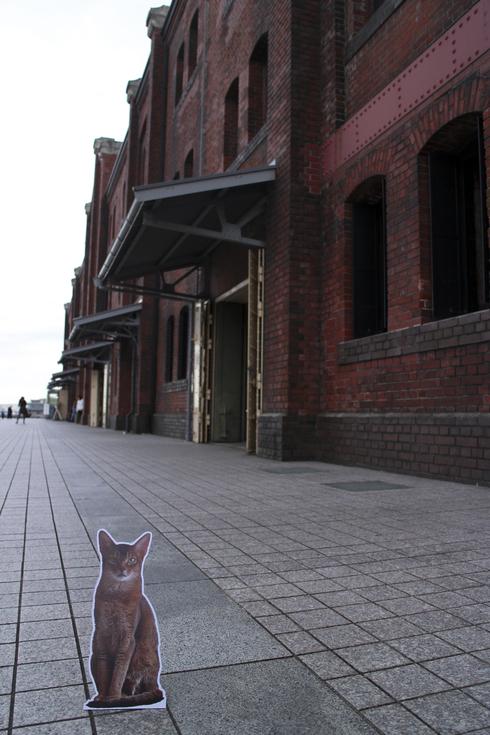 [猫的]歴史的建築物_e0090124_05758.jpg