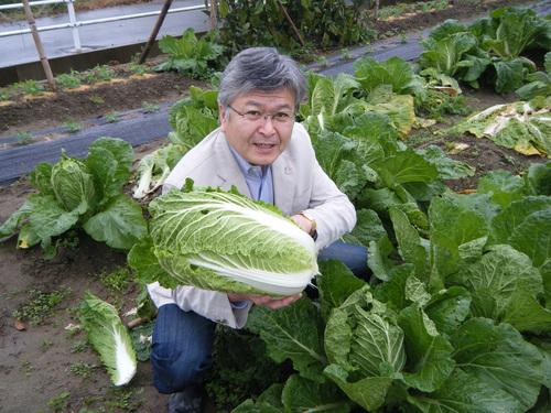 今年も契約農家より 野菜の納入が始まっています_e0154524_1533739.jpg