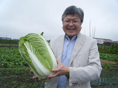 今年も契約農家より 野菜の納入が始まっています_e0154524_1562563.jpg