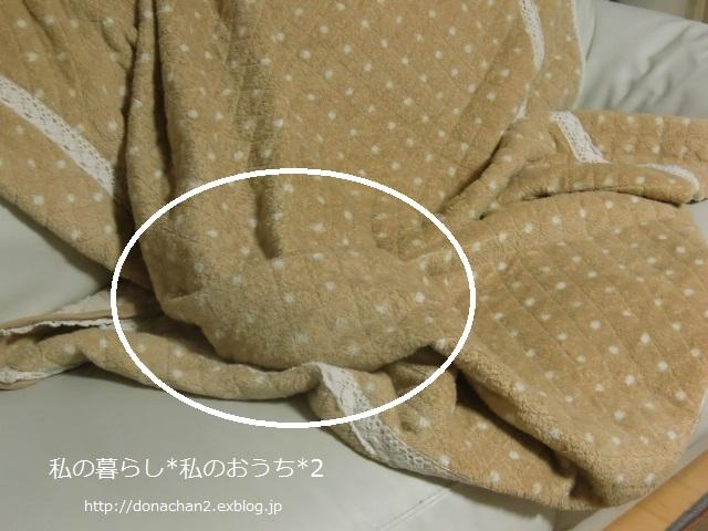 ++ナナのかくれんぼ*++_e0354456_9371731.jpg