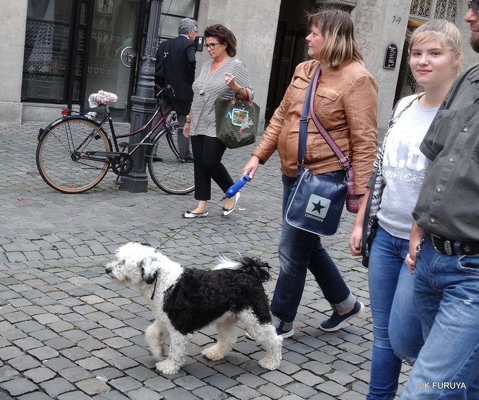 ドイツ9日間の旅 22   アーヘン街歩き ♪ その2_a0092659_15563558.jpg