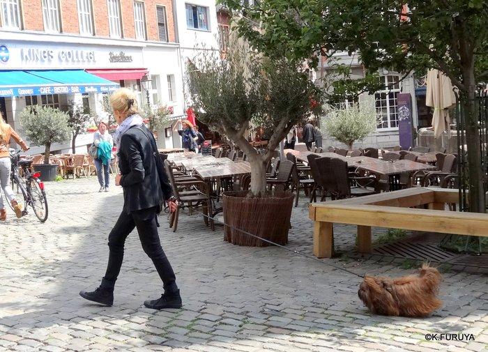 ドイツ9日間の旅 22   アーヘン街歩き ♪ その2_a0092659_1644053.jpg