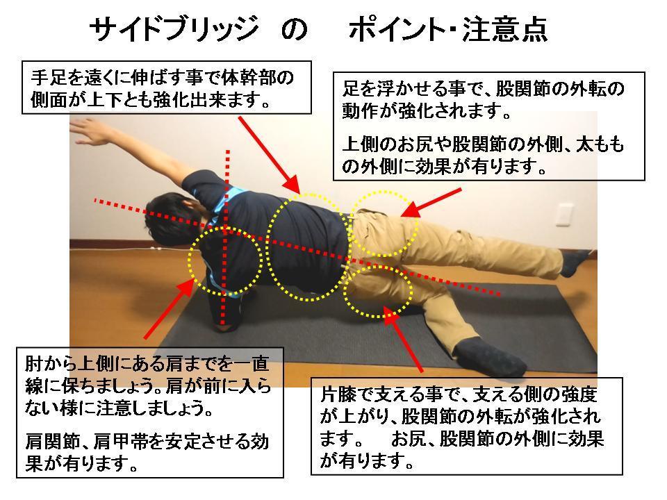 体幹トレーニングの効果的な方法 No7「サイドブリッジ基礎」_c0362789_23381075.jpg