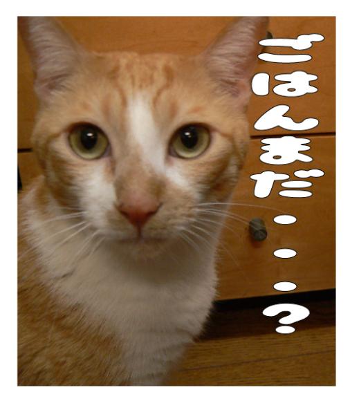 ごはん・ごはんくれ_a0333195_14143181.png