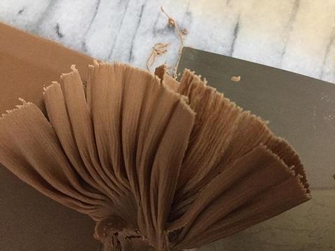 チョコレートの誘惑_e0071324_23040261.jpg