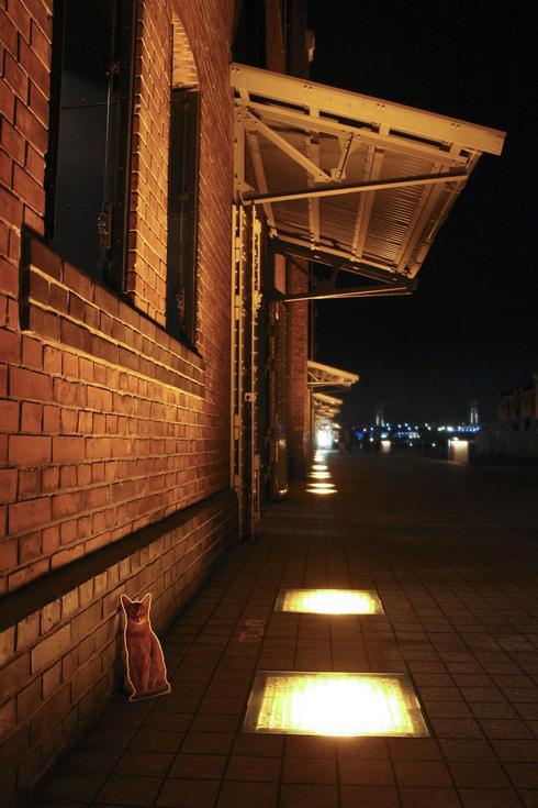 [猫的]赤レンガ倉庫ねこ写真展_e0090124_00496.jpg