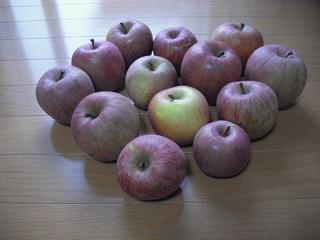 リンゴの季節。。。_c0216937_17423565.jpg