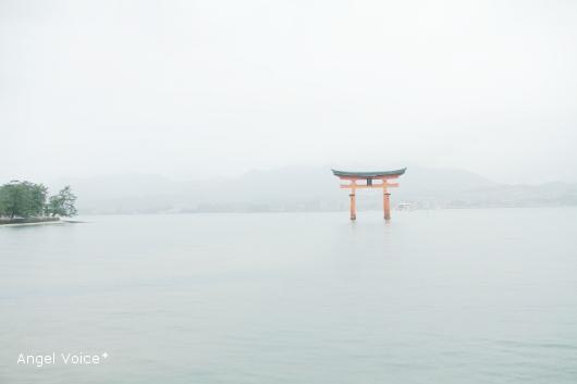 広島、カメラ旅@宮島到着_d0147742_23501836.jpg