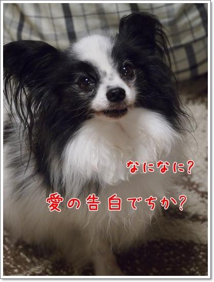 d0013149_00150840.jpg