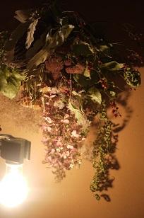③作品アレコレ「フボーと植物展 白4」_f0226293_8404554.jpg