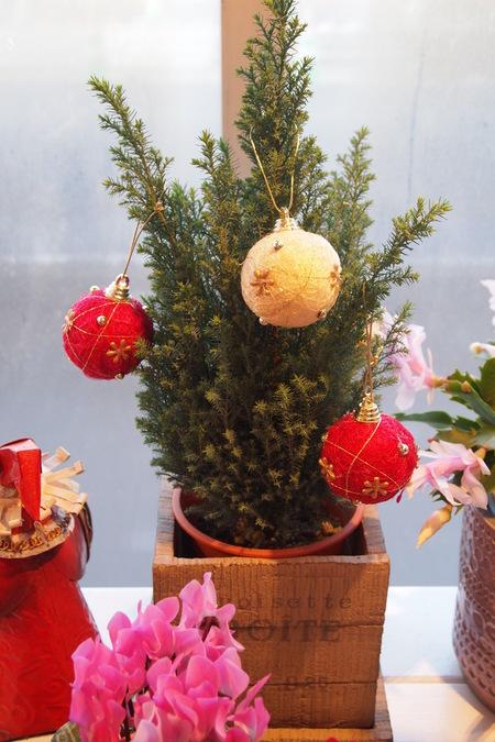 クリスマスのディスプレイ_a0292194_19304995.jpg
