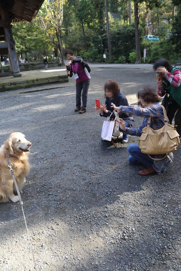 リアル「ハナとお散歩!」の会_b0275998_21192266.jpg