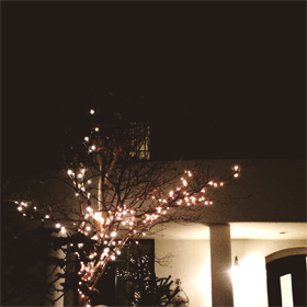 手作りを愉しむクリスマス。_d0174704_1934312.jpg