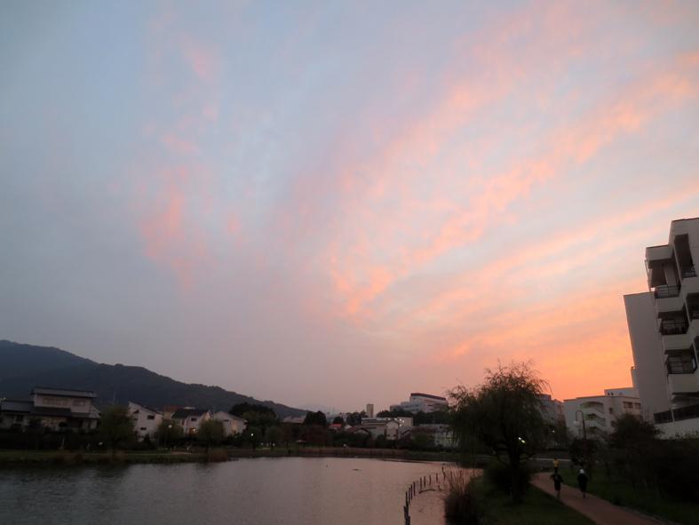 ■ピンク色の空に我が身を遁す時──週替わりの夕暮れ[11/19-22]_d0190217_2294525.jpg