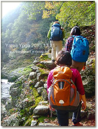 お山でヨガ企画☆11月@保津峡渓谷と水尾の里報告_f0086825_22204535.jpg