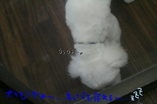 b0130018_19524588.jpg