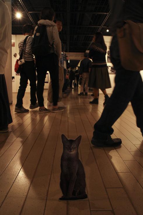 [猫的]来場御礼_e0090124_2341875.jpg