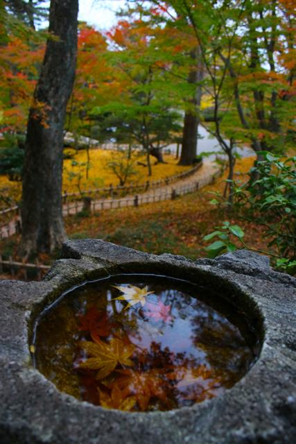 【兼六園】金沢旅行 - 8 -_f0348831_23154979.jpg