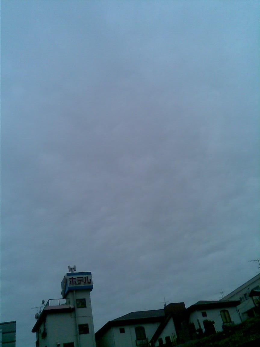 ここ毎日どんより曇天_d0061678_18243867.jpg
