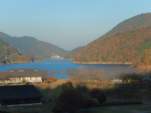 紅葉....綺麗です。_b0137932_22253685.jpg