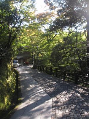 「山中温泉」俳諧句碑めぐり⑱こおろぎ橋周辺案内_f0289632_1039329.jpg