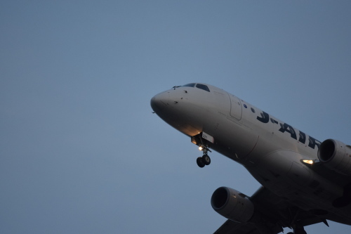 伊丹空港_d0285540_18363627.jpg