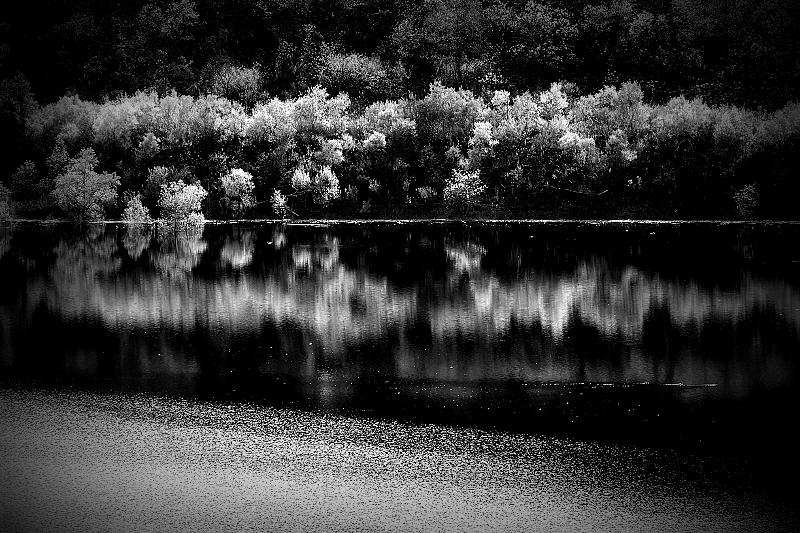 月山湖_b0314043_21564437.jpg