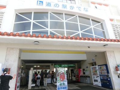 「さとうきび畑」沖縄4日目_f0019247_11284072.jpg