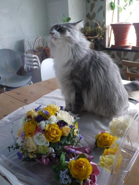 山梨県立美術館で開催中「花の画家 ルドゥーテのバラ」展 見どころ(5)_e0356356_19171596.jpg