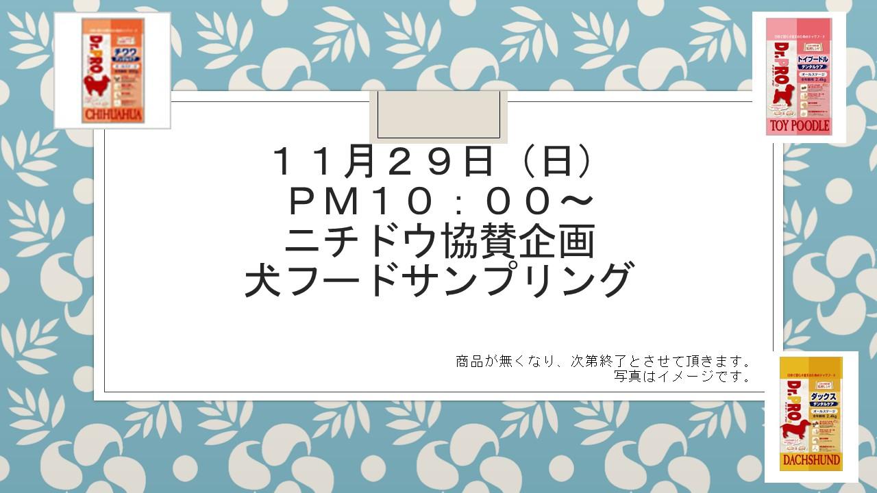 151124 ウインターフェア&イベント告知_e0181866_101861.jpg