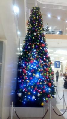 Christmas2015 partⅠ_d0030894_1528166.jpg