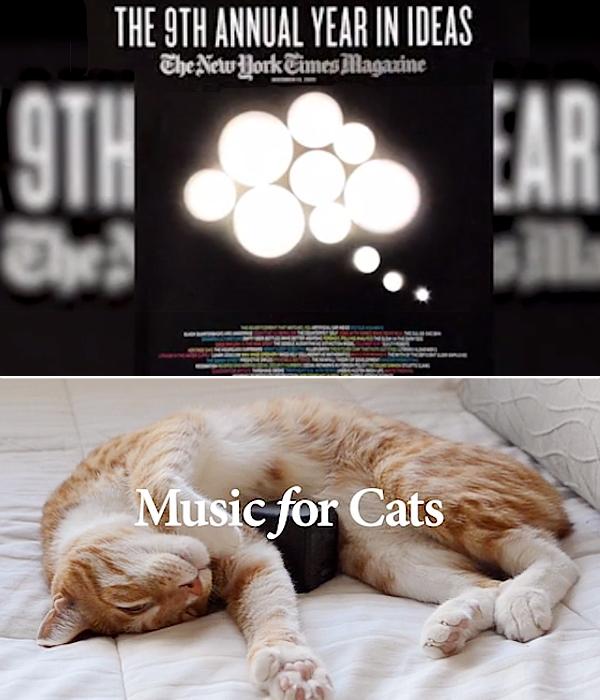 「猫ちゃんのための音楽」(Music for Cats)キックスターターで2万ドルの寄付集めに成功!!_b0007805_239877.jpg