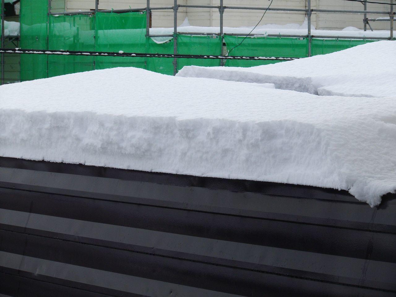 降って降って11月としては62年ぶりの大雪_c0025115_18383919.jpg