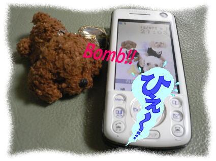 b0183917_11562502.jpg