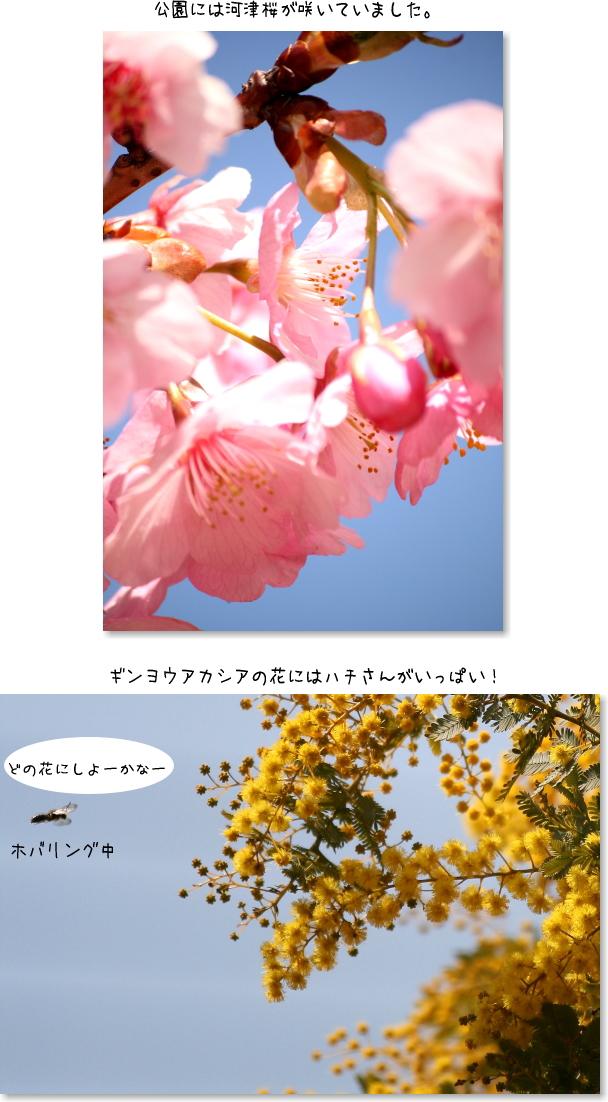 b0183917_12044534.jpg
