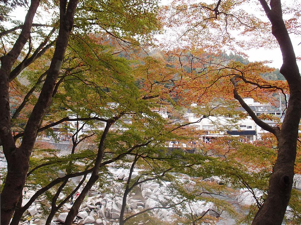 2015.11.22 香嵐渓_f0250322_21343884.jpg