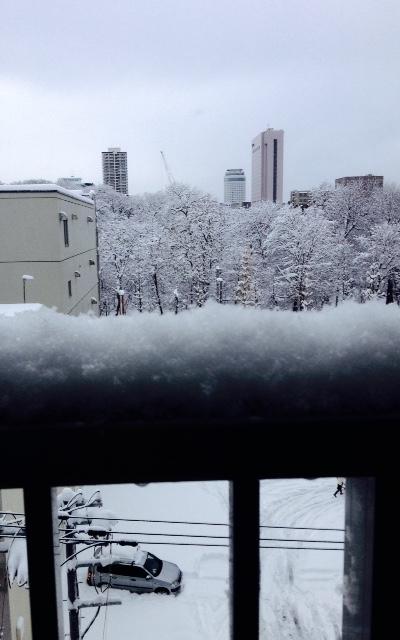 一転して、雪。_b0073937_11523619.jpg