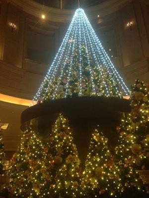 11月、東京での(ワーク以外の)写真(^^)_c0196240_00590745.jpg