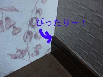 f0076260_19554575.jpg
