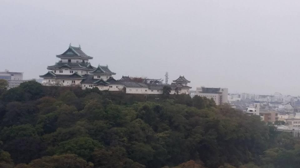 和歌山でのスケジュールを全て終えました。大会を応援して下さった皆様に、心より御礼申し上げます。_c0186691_9121965.jpg
