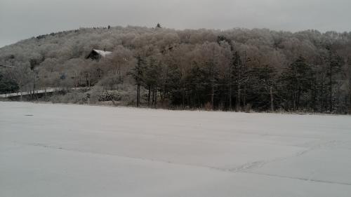雪が少し積もりました_e0128003_20200581.jpg