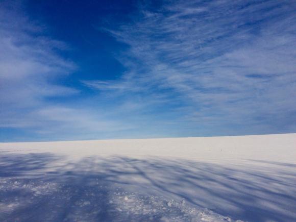 すっかり冬です_f0096216_09010274.jpg