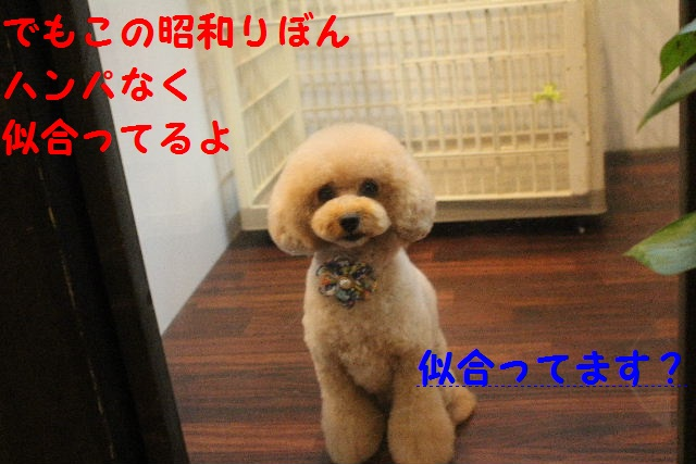 b0130018_0224454.jpg