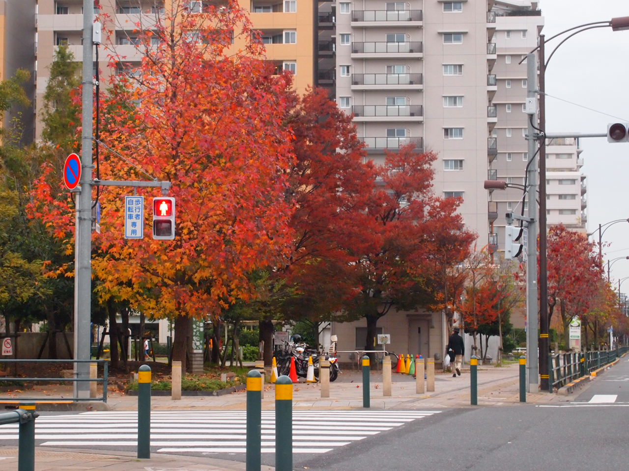 足立区の街散歩   111   _a0214329_23163320.jpg